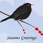 Blackbird - Seasons Greetings by Jacqueline Turton