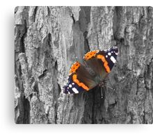 Bark and Butterfly Canvas Print