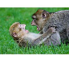 Monkey playing Photographic Print