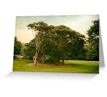 The Tanyosho Pine Grove Greeting Card