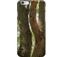 Maple Trees in Summer iPhone Case/Skin
