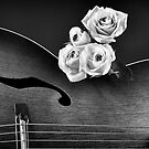 Rose on Guitar II by homendn