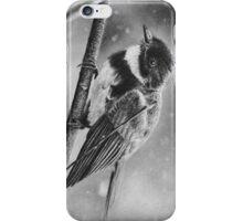 Bird in Winter iPhone Case/Skin
