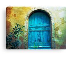 Secret Door Canvas Print
