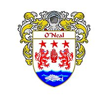 O'Neal Coat of Arms / O'Neal Family Crest Photographic Print