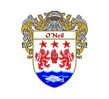 O'Neil Coat of Arms / O'Neil Family Crest Photographic Print