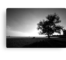 Open View Vast Location Canvas Print