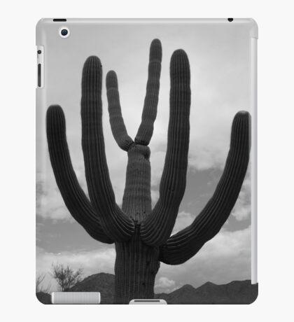 Tucson II BW iPad Case/Skin