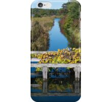 Early Autumn Colors I iPhone Case/Skin