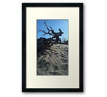 Dunes and Brush Framed Print