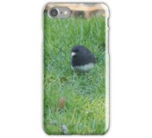 Perfect Bird Collection #7 iPhone Case/Skin