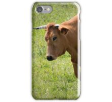 Ambling along iPhone Case/Skin
