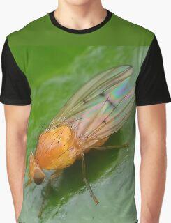 Tiny Orange Fly Graphic T-Shirt