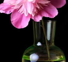 Pink Peony Flower and Vase Sticker