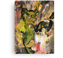 Revealing #006 Canvas Print