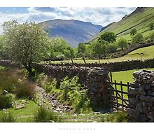 Wasdale Head by Andrew Roland