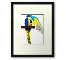 Blue and Yellow Macaw Parrot Framed Print