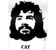 Viva la CAT Stevens! Poster