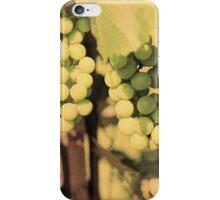 Vintage Grapes iPhone Case/Skin