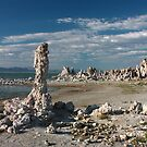 Mono Lake Shores by Daniel Owens