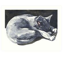 Cat Naps: The Superhero Art Print