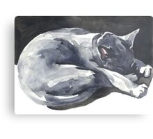 Cat Naps: The Superhero Metal Print