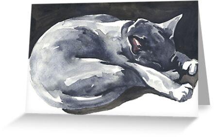 Cat Naps: The Superhero by Denise Faulkner