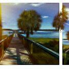 James River Summer by Ted Byrne