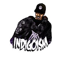 Indigoism Photographic Print