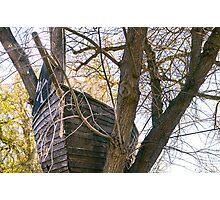 Tree Ho! Photographic Print