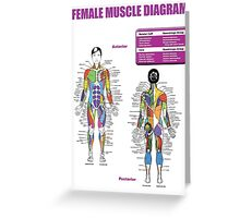 Muscle Anatomy Diagram (Female) Greeting Card