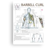 Barbell Curl Exercise Diagram Canvas Print
