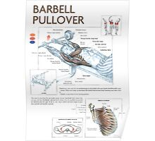 Barbell Pullover Exercise Diagram Poster