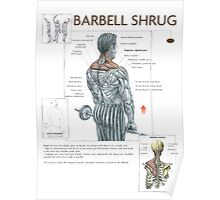 Barbell Shrug Exercise Diagram Poster