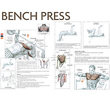 Barbell Bench Press Exercise Diagram Photographic Print