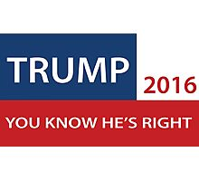 Trump 2016 You know he's right  Photographic Print