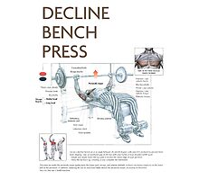Barbell Decline Bench Press Exercise Diagram Photographic Print