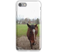 Around-the-World Animals Collection #3 iPhone Case/Skin