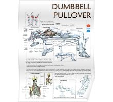Dumbbell Pullover Exercise Anatomy Poster