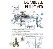 Dumbbell Pullover Exercise Anatomy Photographic Print