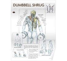Dumbbell Shrug Exercise Anatomy Poster