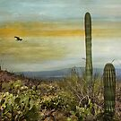 The Beauty of the Southwest by Barbara Manis