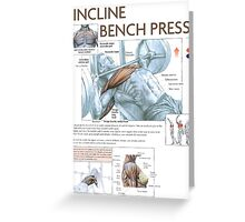 Incline Barbell Bench Press Anatomy Greeting Card