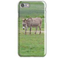 Around-the-World Animals Collection #4 iPhone Case/Skin