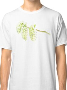 Green willow catkin watercolor painting Classic T-Shirt
