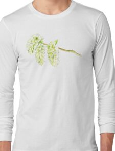 Green willow catkin watercolor painting Long Sleeve T-Shirt