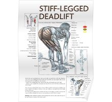 Barbell Stiff-Legged Deadlift Diagram Poster