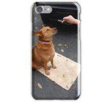 Around-the-World Animals Collection #5 iPhone Case/Skin