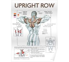 Barbell Upright Row Diagram Poster