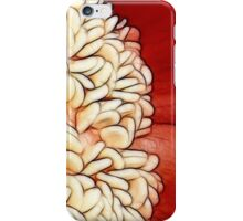 Red Hot Pepper iPhone Case/Skin